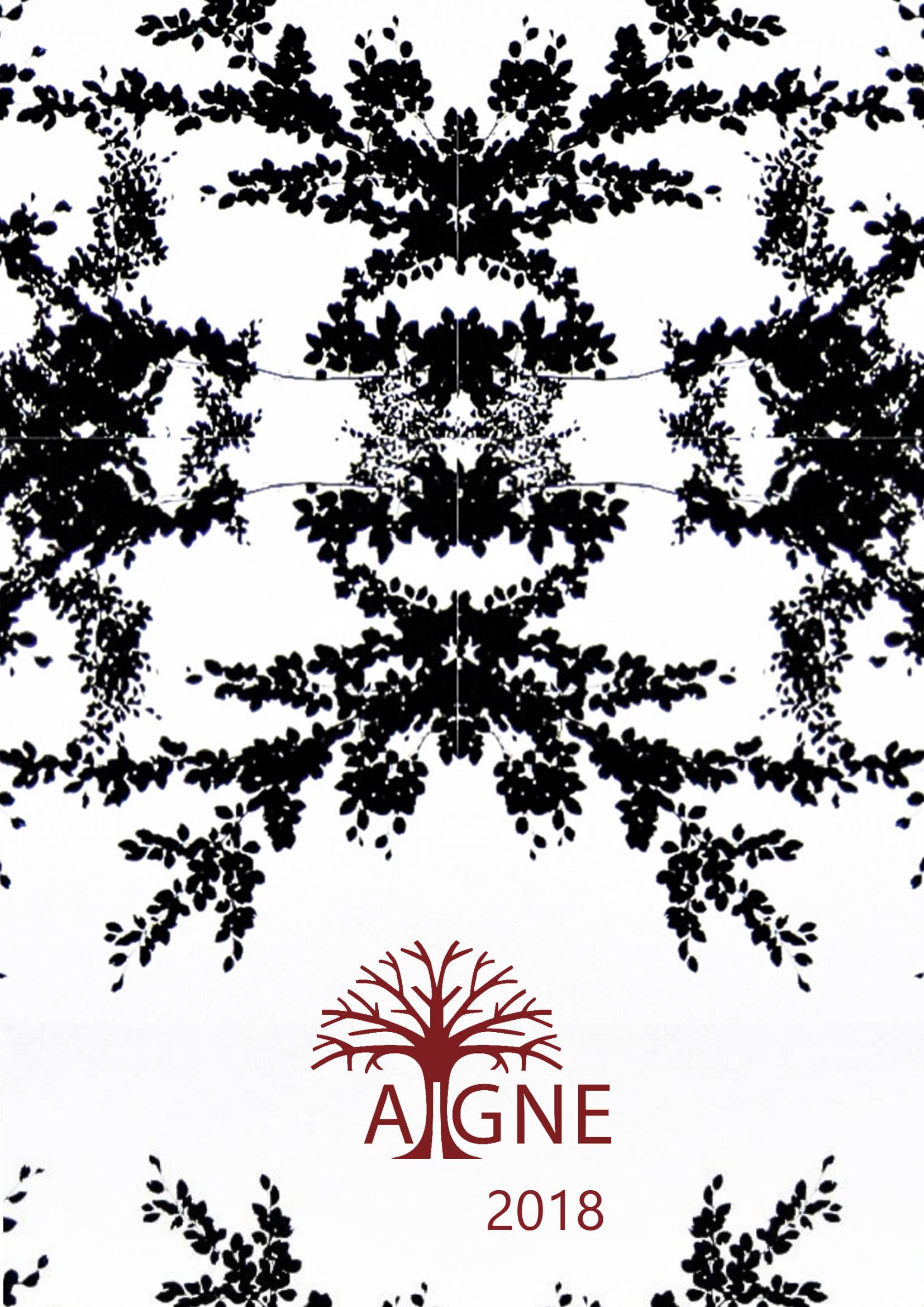 Aigne 2018 cover image